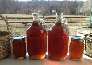 Homemade Maple Syrup has been one of their family farm projects.